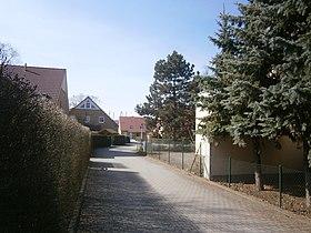 dauerbewohner in kleingärten