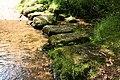 North Bovey, stepping stones, Jurston Ford - geograph.org.uk - 2475225.jpg