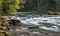 North Umpqua Wild and Scenic River (19703196250).jpg
