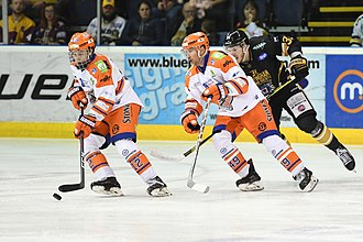 Ice hockey in the United Kingdom - The biggest rivalry in British ice hockey is between the Nottingham Panthers and the Sheffield Steelers.