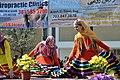 Nowruz Festival DC 2017 (32946359083).jpg