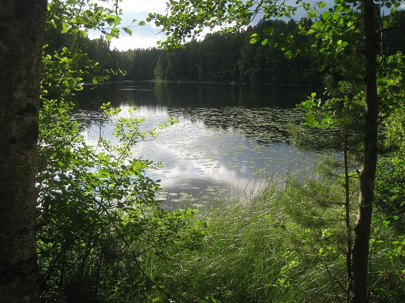 A lake at Nuuksio National Park, Finland