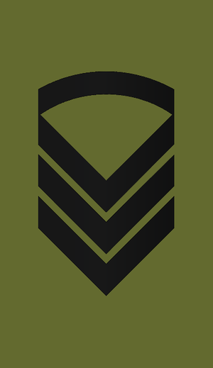 Staff sergeant - Staff sergeant insignia in the Army of Norway.