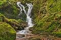 Oberried (Breisgau) - unterer Buselbach-Wasserfall I.jpg