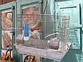 Old Jerusalem bird cage P1060440.JPG
