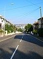Old Shoreham Road - geograph.org.uk - 536418.jpg