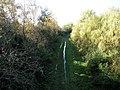Old railway line at Shelford Road, looking west - geograph.org.uk - 1571514.jpg