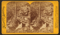 Onoko Glen. Rustic staircase, by Purviance, W. T. (William T.).png