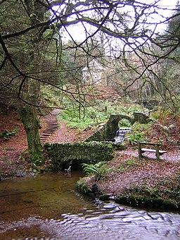 Ornamental Bridges, Glynllifon Country Park. - geograph.org.uk - 97341