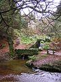 Ornamental Bridges, Glynllifon Country Park. - geograph.org.uk - 97341.jpg