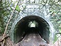 Osawa tunnel.jpg