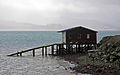 Otago Peninsula boat sheds series 4, 28 Aug. 2010 - Flickr - PhillipC.jpg