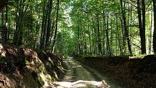 Szczebrzeszyn Landscape Park