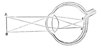 PSM V01 D479 Object of sight.jpg