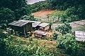 Pa Pae, Thailand (Unsplash).jpg
