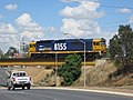 Pacific National 81 class loco (8155) on the viaduct over Edward St in Wagga Wagga.jpg