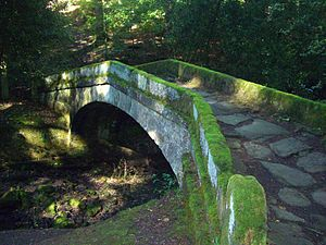 Glen Howe Park - The Packhorse bridge