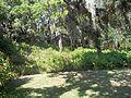 Palmetto FL Emerson Point Portavant Mound09.jpg