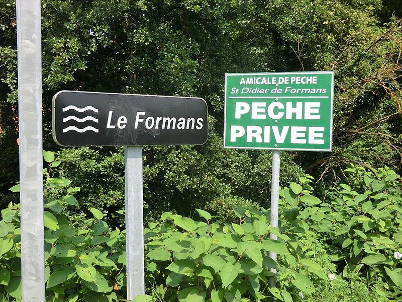 Panneau indiquant le Formans à Saint-Didier-de-Formans.