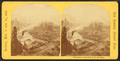 Panorama from new P.O. building, from Robert N. Dennis collection of stereoscopic views 14.png