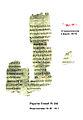 Papyrus Fouad 266.jpg