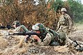 Paratroopers and Ukrainian national guard soldiers conduct squad live-fire training.jpg