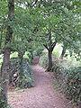 Parc de Pedra Tosca - Ways 01.jpg