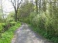 Park Wood on Park Wood Lane - geograph.org.uk - 1261960.jpg