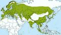 Parus major subspecies.ro.png