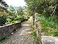 Path from Mottram Church - geograph.org.uk - 1434338.jpg
