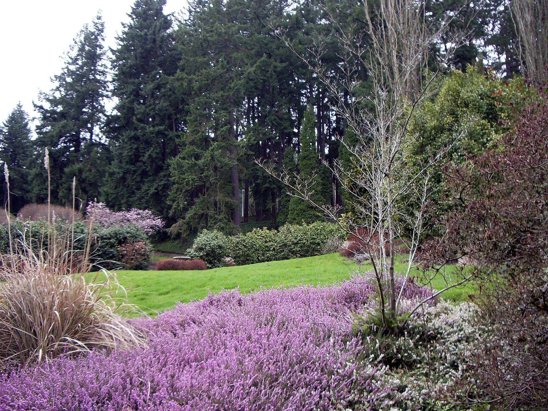 Entrance To Portland Rose Gardens : Washington park portland oregon wikipedia