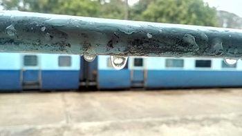 Peace of rain.jpg