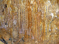 cave decorations risovaca.jpg
