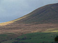 Pendle Hill - geograph.org.uk - 74175.jpg