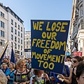 People's Vote March 2018-10-20 - We lose our freedom of movement too.jpg