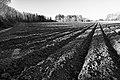 PermaLiv Sundvika 23-04-25.jpg
