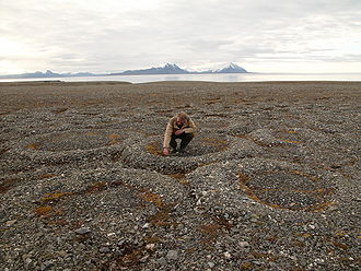 Frost heaving - Partially melted and collapsed lithalsas (heaved mounds found in permafrost) have left ring-like structures on the Svalbard Archipelago