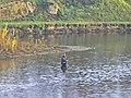 Pescatore Bisenzio.jpg
