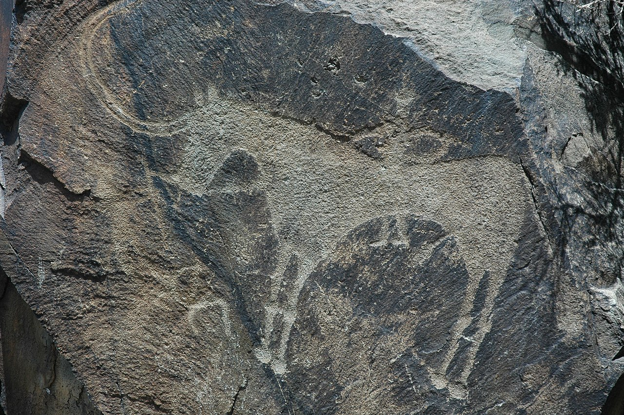 Petroglyphs within the Archaeological Landscape of Tamgaly-115295.jpg