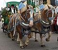 Pferdewagen .. 3-origWI.jpg