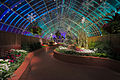 Phipps Conservatory winter 2015 Serpentine Room 2.jpg