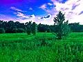 Photos-OutdoorImage-AdobeStock-Fiedl1.jpg