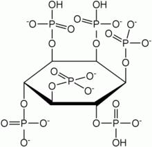 acido urico alto biodescodificacion causas de aumento y disminucion del acido urico acido urico valores normales ninos