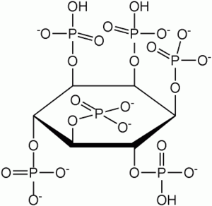 Antioxidant - Structure of the metal chelator phytic acid.
