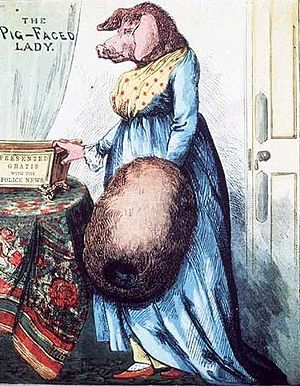 An elegantly dressed woman with the ears and face of a pig