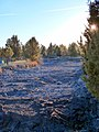 Pilot Butte Canal at Old Deschutes Rd 2 - Bend Oregon.jpg