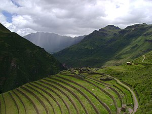 Andean civilizations - Agricultural terraces (andenes, were widely built and used for agriculture in the Andes