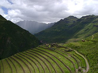 Andean civilizations - Agricultural terraces (andenes, were widely built and used for agriculture in the Andes.