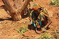 Plantation Worker in Chinmaya Vibhooti.jpg