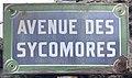 Plaque Avenue Sycomores - Le Pré-Saint-Gervais (FR93) - 2021-04-28 - 1.jpg